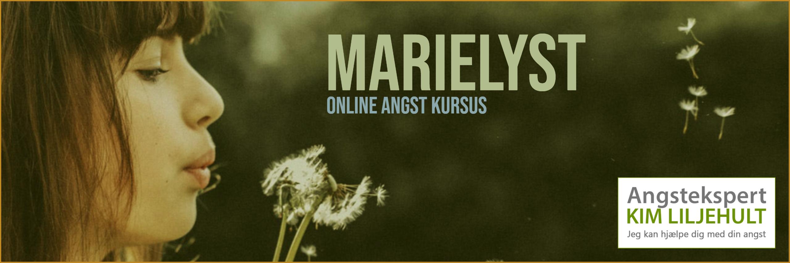 Marielyst - herfra kan du få hjælp online til din angst